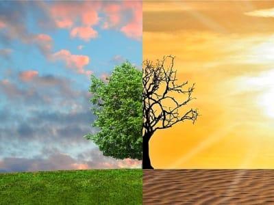 climate-change-2063240_960_720.jpg