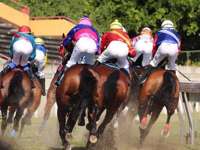 horse-racing-2357030_640.jpg
