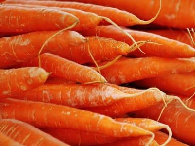 carrots 382686 640