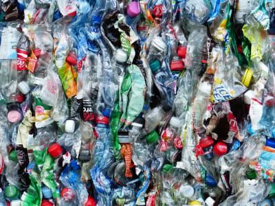 plastic-bottles-115071_960_720.jpg
