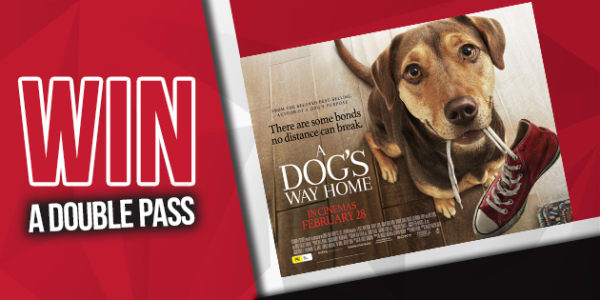 win lafm a dogs life