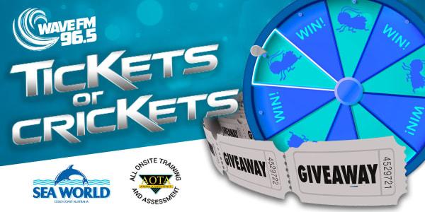 Tickets or crickets slider