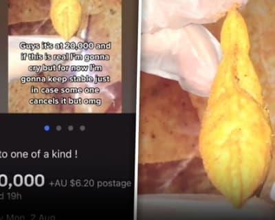 puffy doritos chip header
