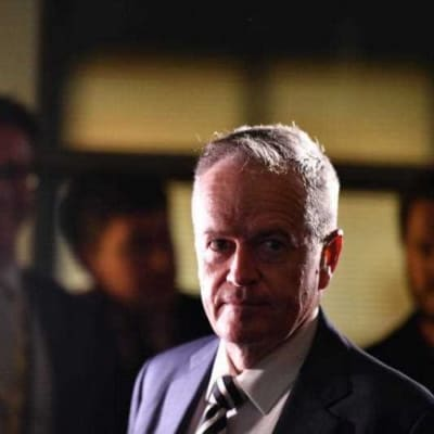 Leader-of-the-Opposition-Bill-Shorten-650x433.jpg