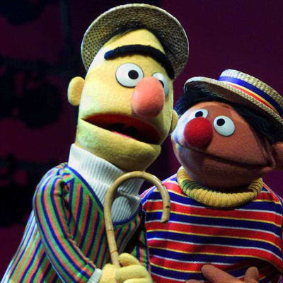 Sesame St denies Bert and Ernie are gay.jpg