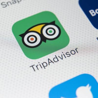 TripAdvisor_halts_Woking_pizza_reviews.jpg