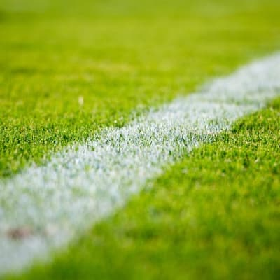 close up of grass on football field