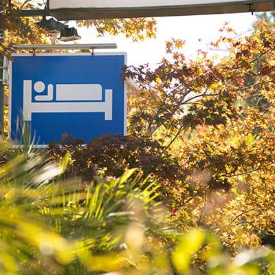 accommodation shutterstock 768343021 600x400