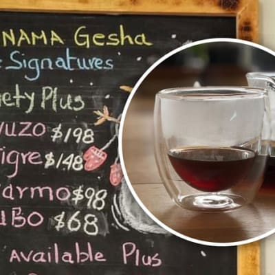 gesha cafe coffee