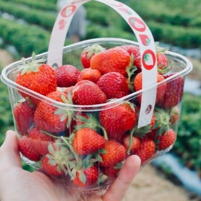 fruit strawberries rich smith 2eANJphFFAM unsplash