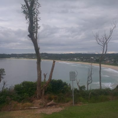 Mollymook from Bannister Head