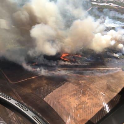 29_July_-_Top_End_Bushfire_-_McMillians.png