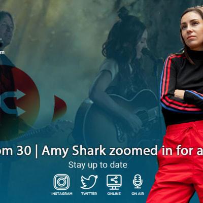 Amy-Shark-TN.jpg
