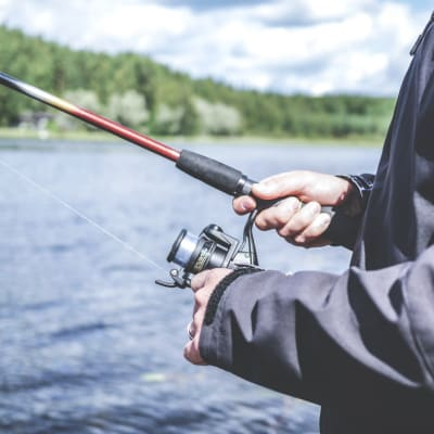 activity-bait-fisherman-294674.jpg