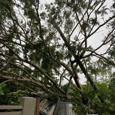 cyclone_3.jpeg
