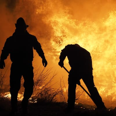 fire-extinguisher-3891361_960_720.jpg1.jpg