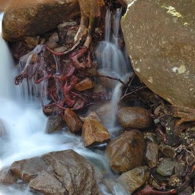 small-waterfalls-near__2.jpg