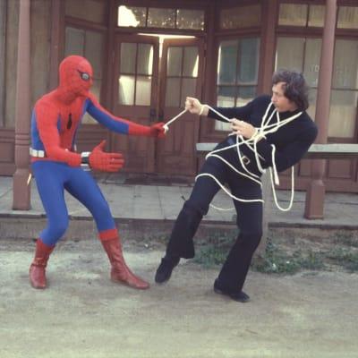 Amazing Spider man.jpg