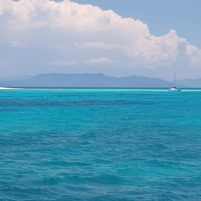 Great Barrier Reef - Vlasoff Cay.jpg