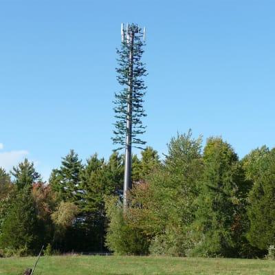 Mobile_Phone_Tree.jpg