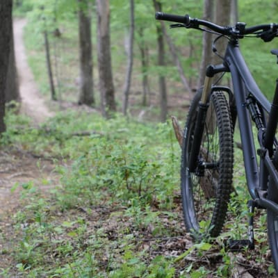 Mountain Bike - Free.jpg