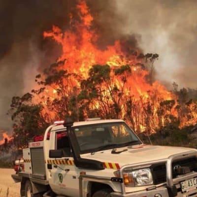 Bushfires 2019 Alex Eldridge