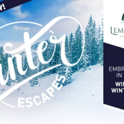 Winter Escapes Slider 2018 lemonthyme coming soon