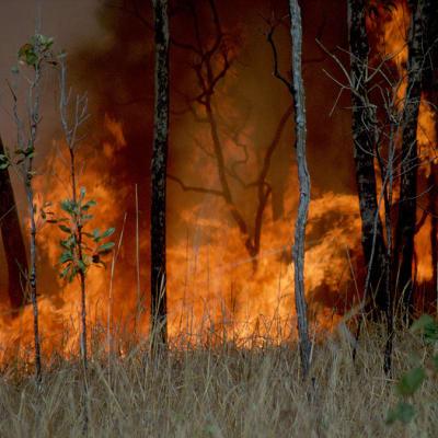 1024px-CSIRO_ScienceImage_391_Burning_as_Land_Management_1.jpg
