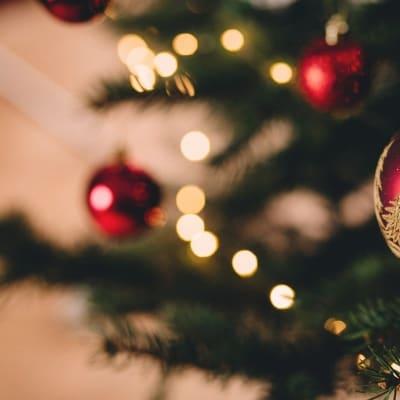 ball_blur_bokeh_celebration_christmas_christmas_balls_christmas_lights_christmas_tree-1476227_1_1.jpg