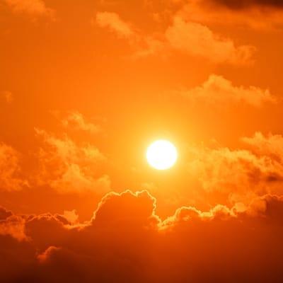 sun-4380521_1920_2.jpg