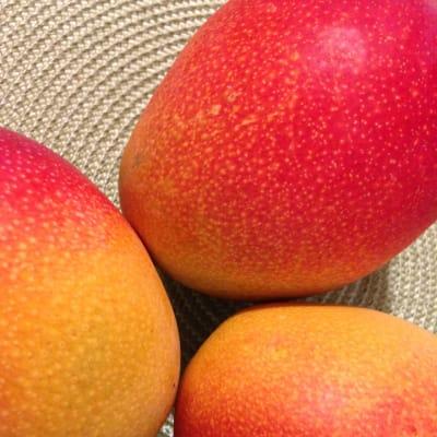 mango.jpeg