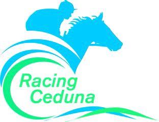 2046 cdna logo