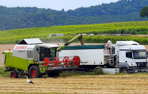 combine harvester 6415085 1920