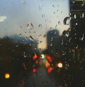 librestock rain