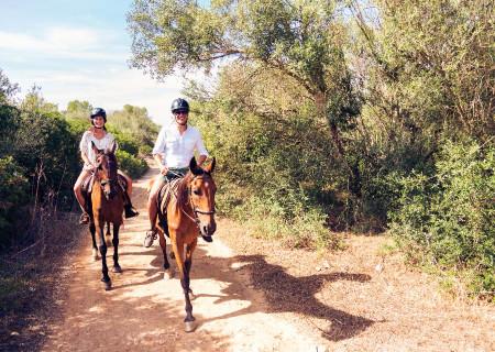 Horseback-adventures-cairns.jpg