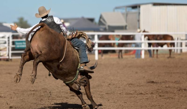 The-beautiful-Mareeba-and-the-Mareeba-Rodeo_B.jpg