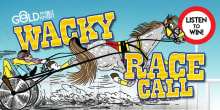gold wacky race call slider
