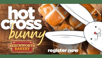 hot cross bunny2