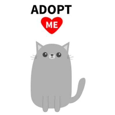 adoptbruno.png