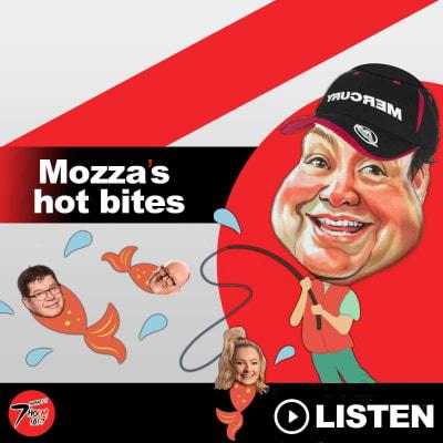 Mozza's Hot Bites