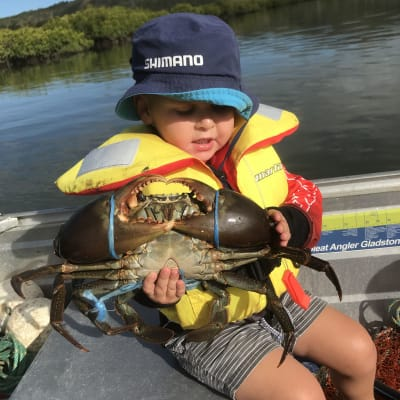 School holidays, take the family fishing and crabbing. Find out where to go and stock up at LJ's Compleat Angler Gladstone Harbour
