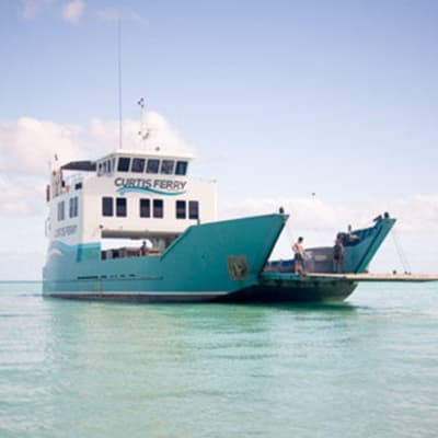 Take a trip to the Islands with Curtis Ferry's Kids travel for free with the code word  Backyard