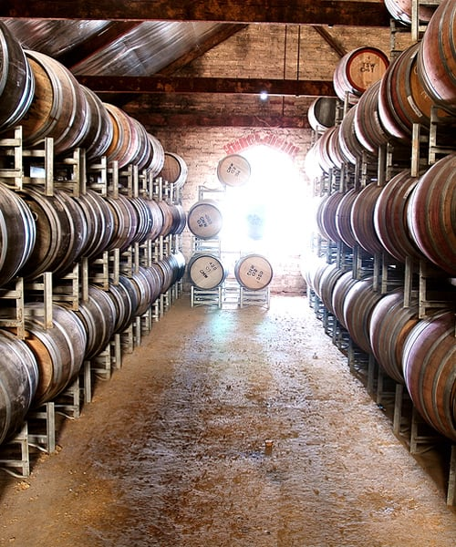Wine barrels storage in winery