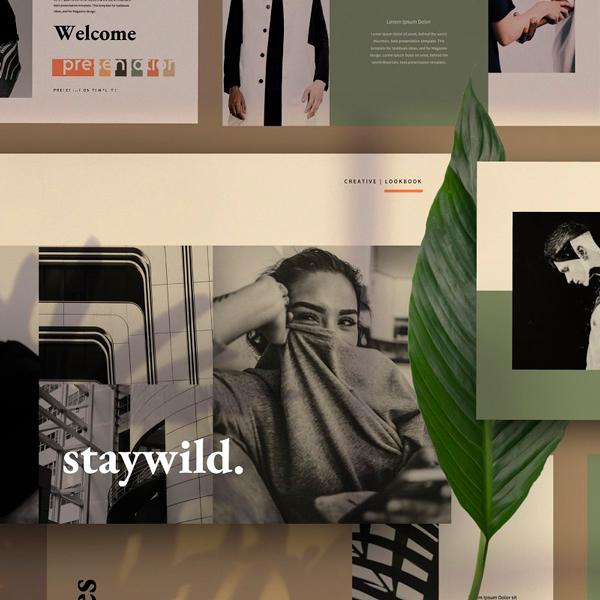 Staywild Plantilla Presentación