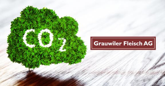 Die Umwelt liegt uns am Herzen, unser Beitrag zum Klimaschutz