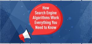 Search Engine Algorithms