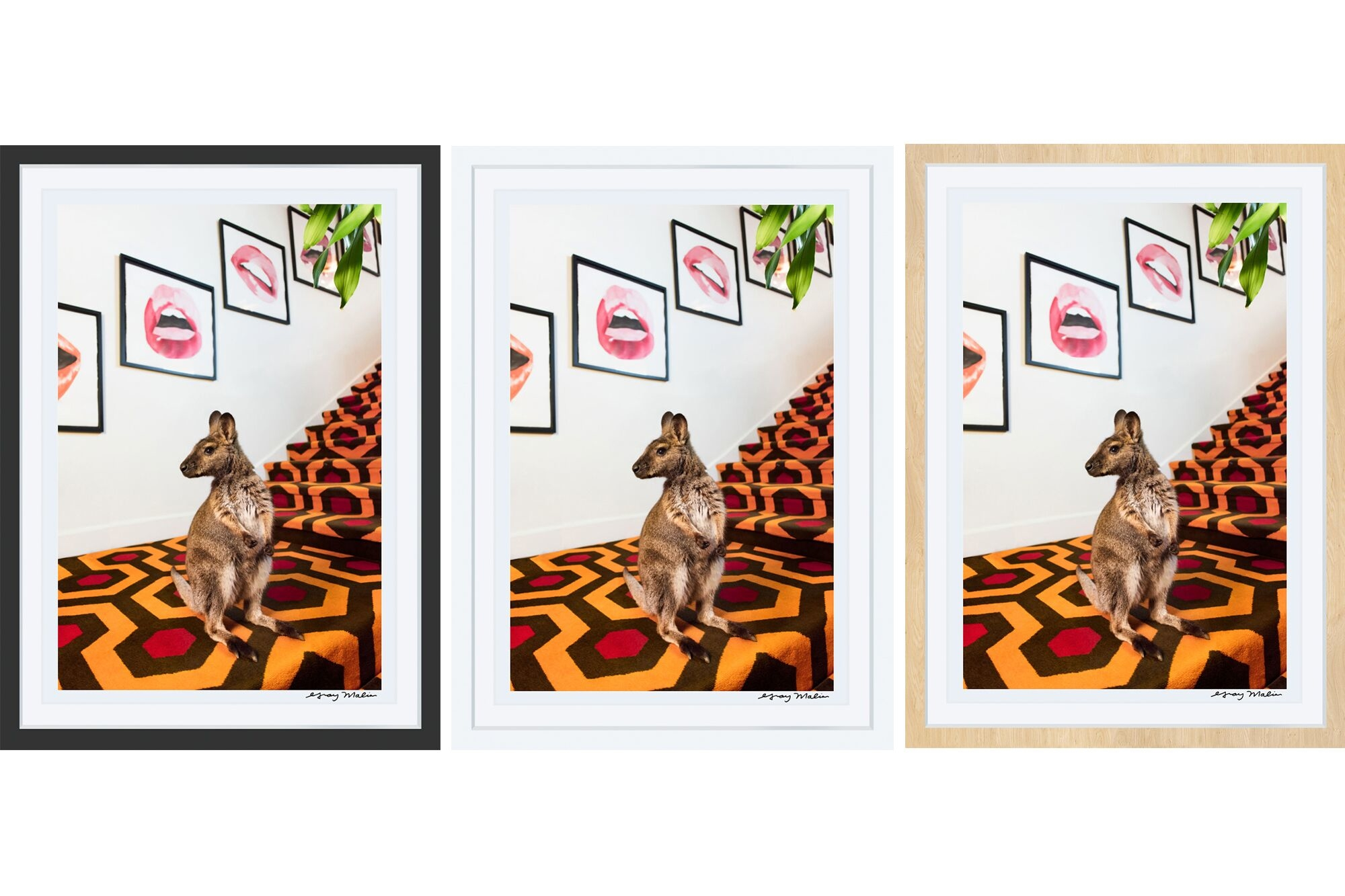 How to Choose the Best Frame for Your Print   Gray Malin