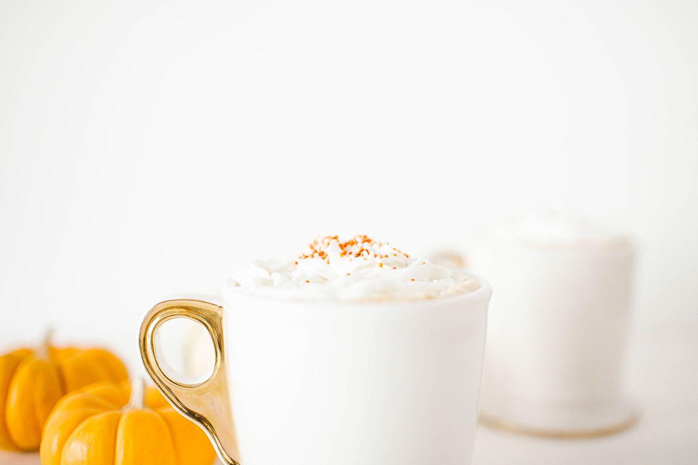 Spiked Pumpkin Hot Chocolate Recipe | GRAY MALIN