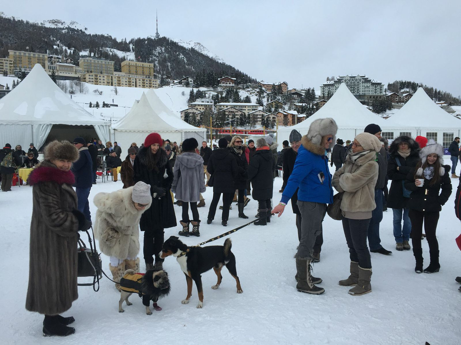 Snow-Polo-St-Moritz