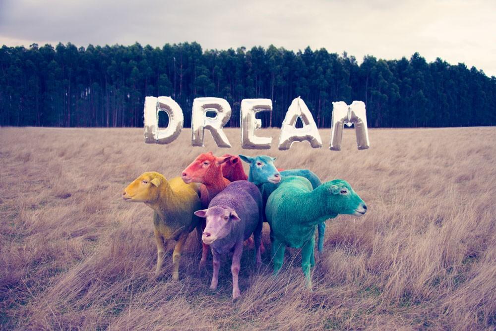 Gray Malin DREAM